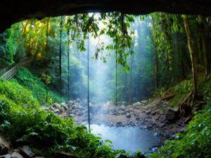 a nature shower